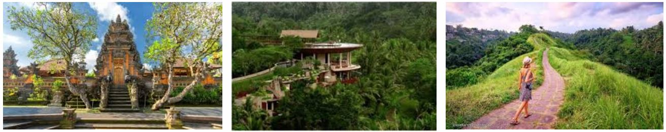 Ubud, The Ultimate Tourist Destination