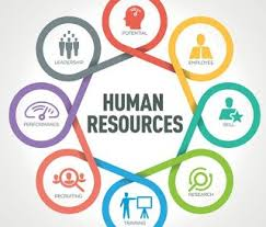 Human Resource Management | What is HRM? – mc.ai
