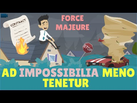 FORCE MAJEURE EFFECTS ON THE BUSINESS